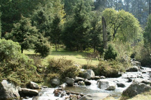 Parque Ecológico Los Dinamos