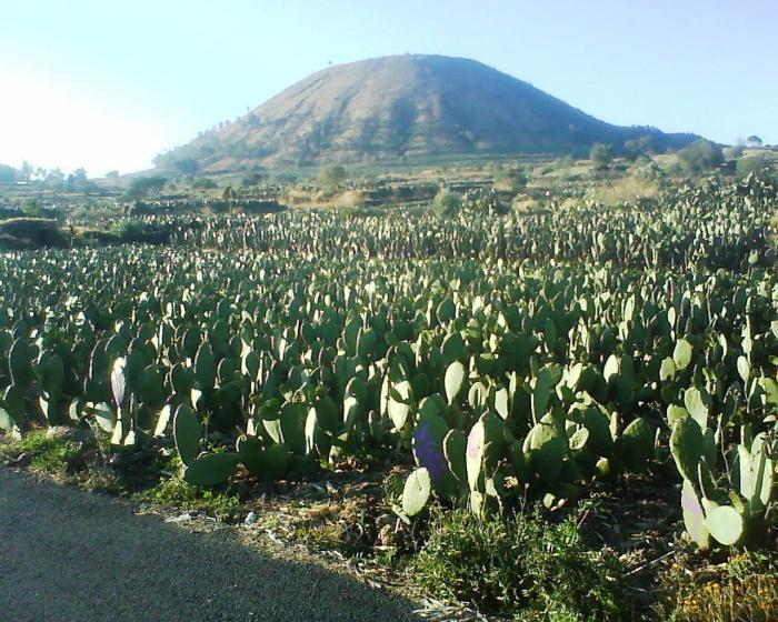 volcan-Teuhtli